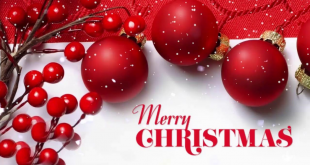 Happy Christmas Day 2019 Quotes and Sayings