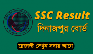 SSC Marksheet 2020 Dinajpur Education Board