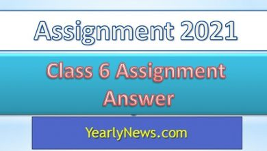 Class 6 Assignment Answer