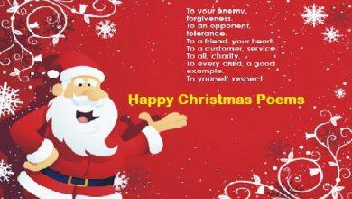 Happy Christmas Poem