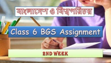 2nd Week Class 6 BGS Assignment