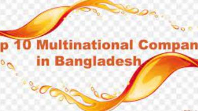 Top Multinational Companies